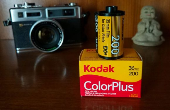 Phân biệt các loại film máy ảnh dành cho người mới bắt đầu chụp phim